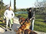 Guido, Ada and dogs