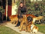 Michal and dogs